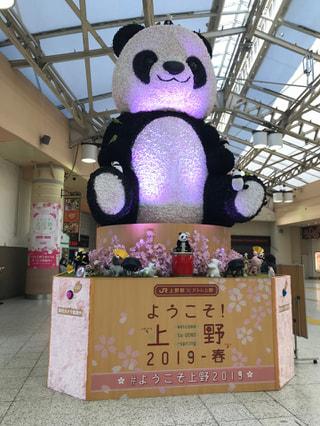 シャンシャン??上野駅は今日もにぎやかです♡
