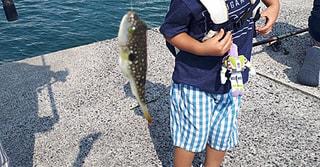 念願かなって孫とお魚さん🐡を釣りにきました!!