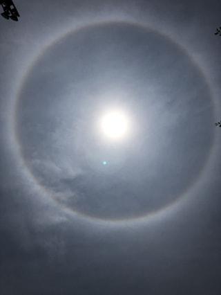 生まれて初めて見ました。太陽を囲む円形の虹!!