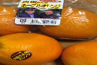 日日是好日 『内田さんのオレンジ』