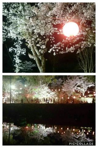 GWおすすめスポット中間市の垣生公園(はぶこうえん)