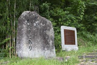 日日是好日 『山崎の合戦』イヤと言うほど、さびしんぼうの男