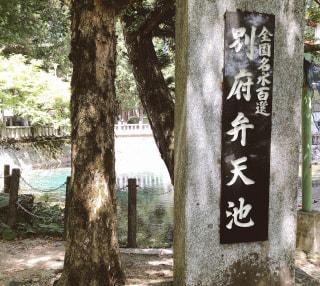 ♪アメコカおさんぽ日記♪山口県美祢市にあります、別府弁天池へ行ってきました🐶✨