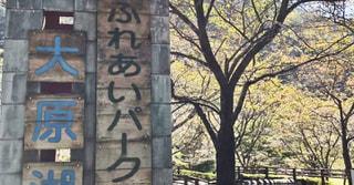 白熱!夜の綱引きと罰ゲーム!!